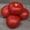 Семена Китано. Томат КИБО F1  #1164632